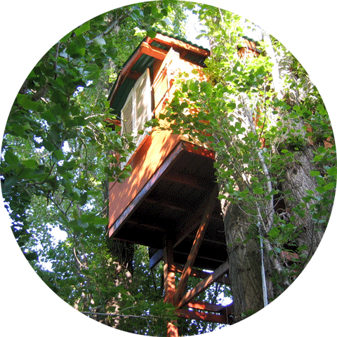 A Kid's Tree-house built by Dad